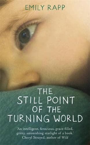 9781444775938: The Still Point of the Turning World: A Mother's Story