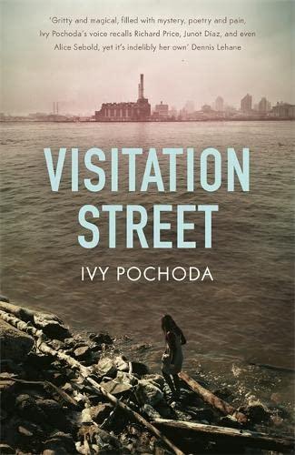 9781444778243: Visitation Street