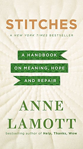 9781444789140: Stitches: A Handbook on Meaning, Hope, and Repair