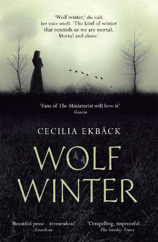 9781444789553: Wolf Winter