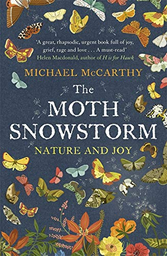 9781444792799: The Moth Snowstorm: Nature and Joy