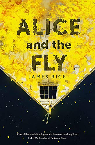 9781444799514: Alice and the Fly