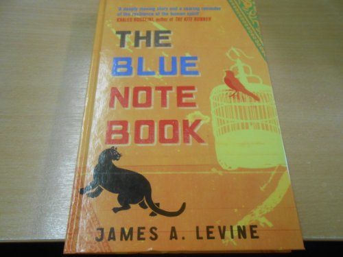 9781444800227: The Blue Notebook