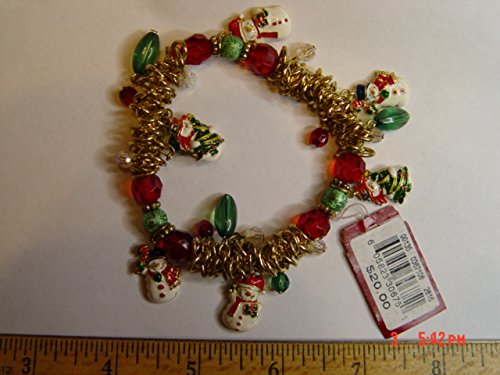 9781444815153: The Charm Bracelet