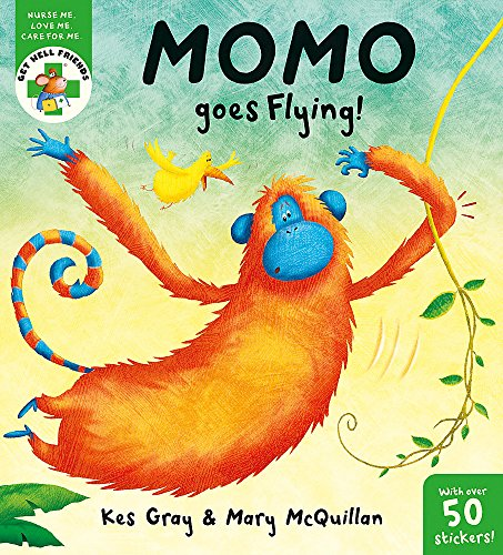 9781444900293: Get Well Friends: Momo Goes Flying