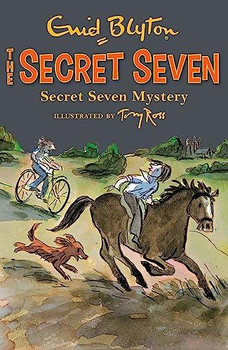 9781444913514: Secret Seven Mystery: Book 9