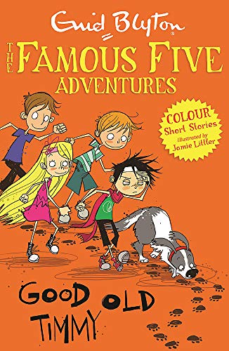 9781444916300: Good Old Timmy (Famous Five Colour Reads)