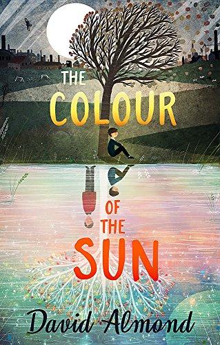 9781444919554: The Colour of the Sun