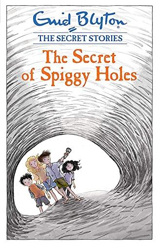 9781444921120: The Secret of Spiggy Holes (Secret Stories)