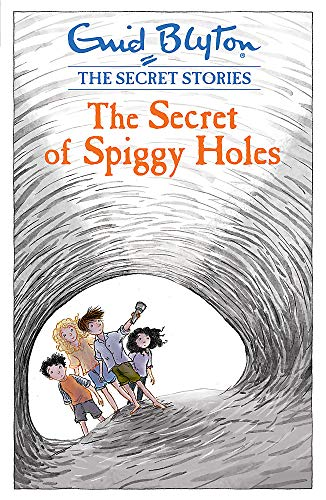 9781444921120: The Secret of Spiggy Holes (Secret Stories)