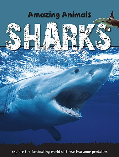 9781445100036: Sharks (Amazing Animals)