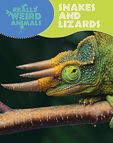 9781445105246: Snakes and Lizards (Really Weird Animals)