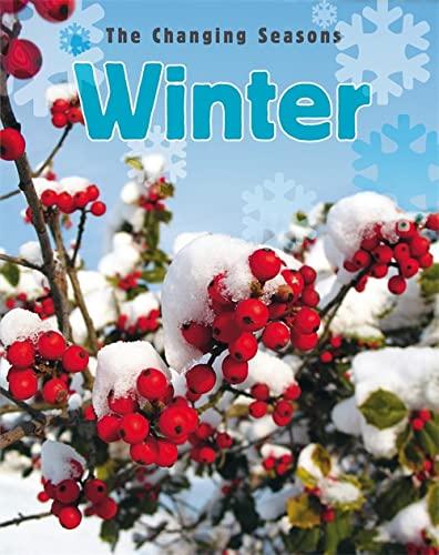 9781445107158: Winter (Changing Seasons)