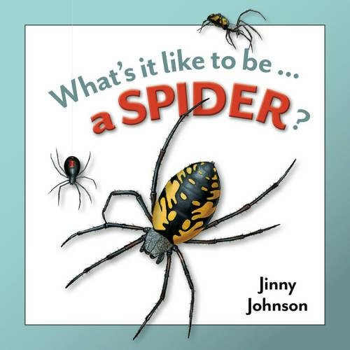 9781445121901: A Spider (What's it Like to be)