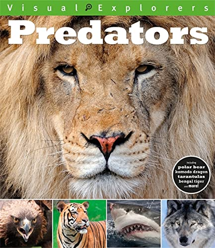 9781445127064: Visual Explorers: Predators