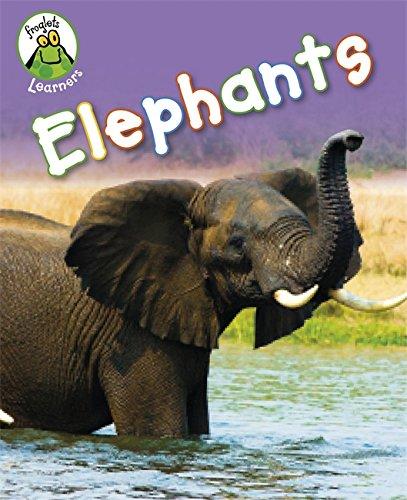 Froglets Learners: Elephants: Lynch, Annabelle