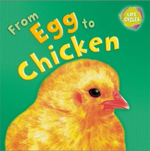 Lifecycles: From Egg To Chicken: Legg, Gerald