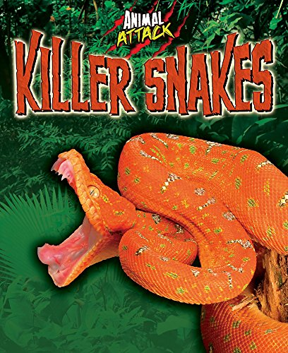 9781445131092: Killer Snakes (Animal Attack)
