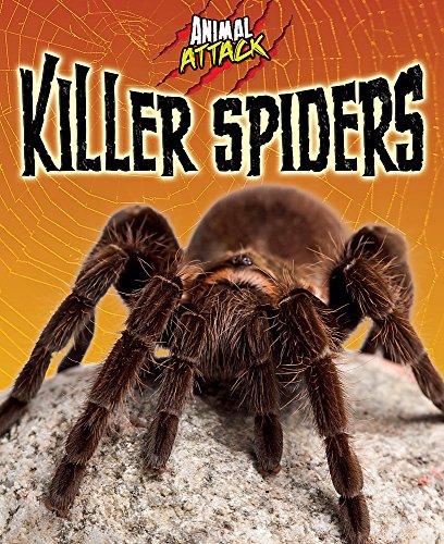 Animal Attack: Killer Spiders: Woolf, Alex