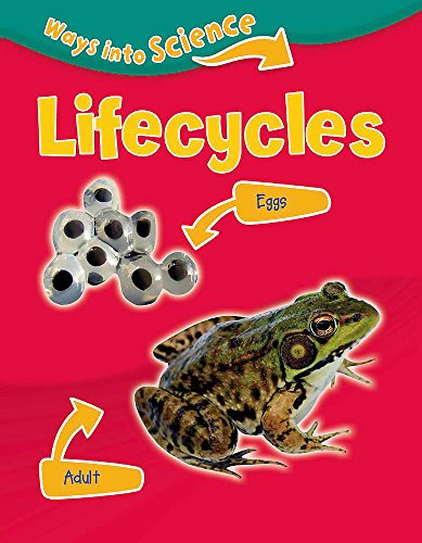 9781445134765: Lifecycles (Ways Into Science)