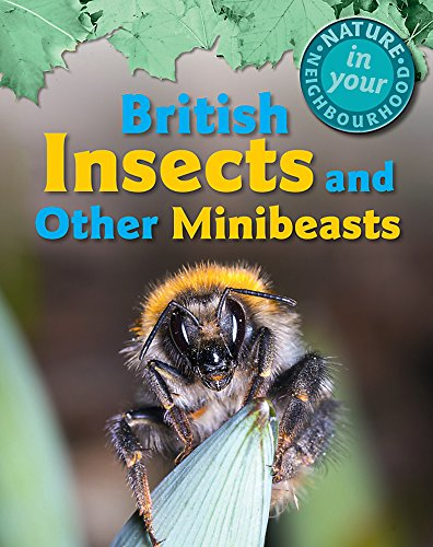 Nature in Your Neighbourhood: British Insects and other Minibeasts: Collinson, Clare