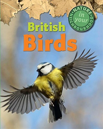 British Birds (Nature in Your Neighbourhood): Collinson, Clare