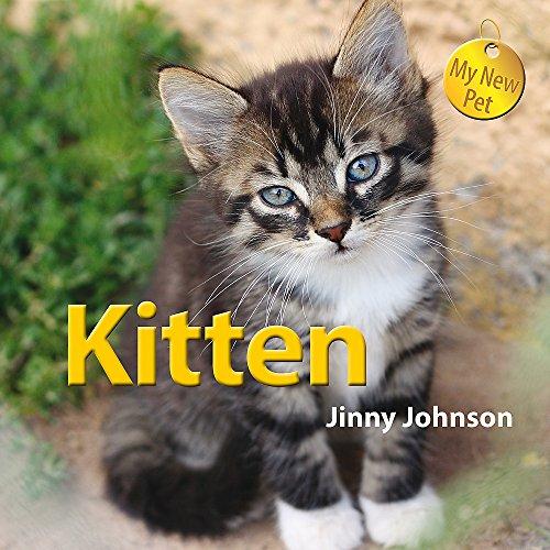 My New Pet: Kitten: Johnson, Jinny