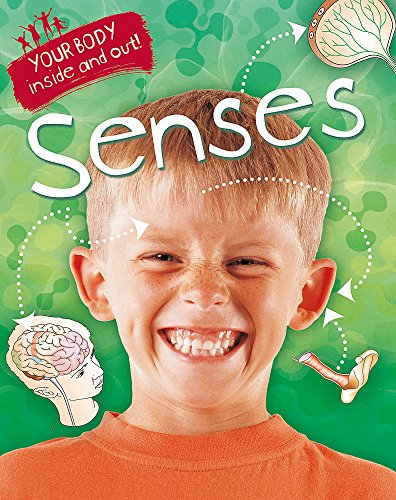 9781445138879: Senses (Your Body: Inside & Out)