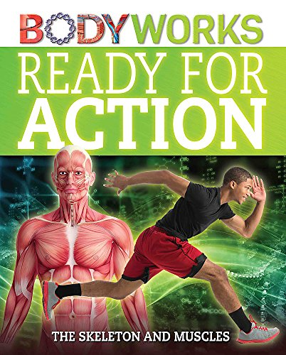 9781445143378: Ready for Action: The Skeleton and Muscles (Bodyworks)