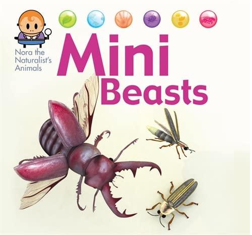 9781445144955: Nora the Naturalist's Animals: Minibeasts