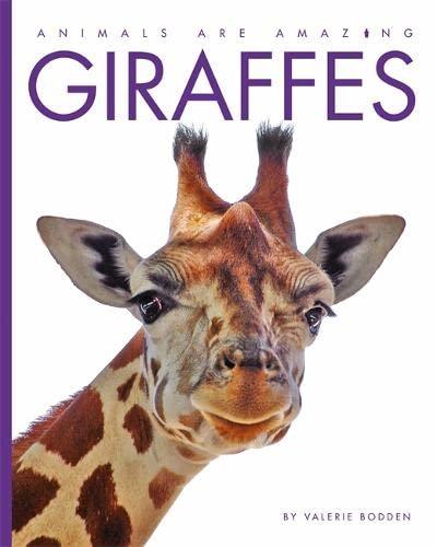 9781445145211: Giraffes (Animals are Amazing)