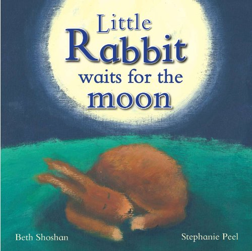 9781445407968: Little Rabbit Waits For the Moon (Meadowside PIC Books)