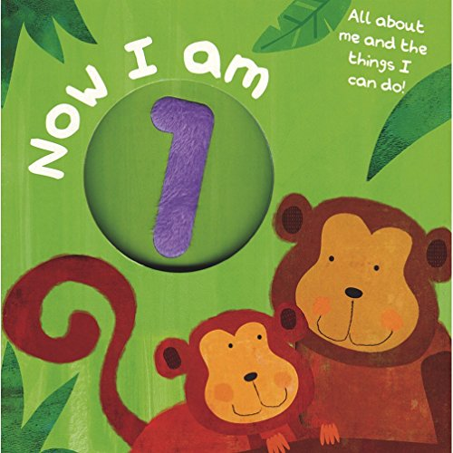 9781445416441: Board Book - I am 1