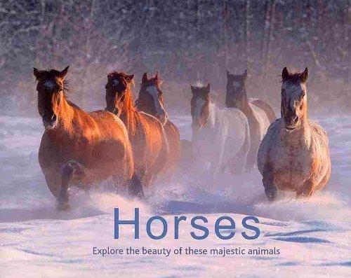 Horses: Explore the Beauty of These Majestic: Ltd. Parragon Books