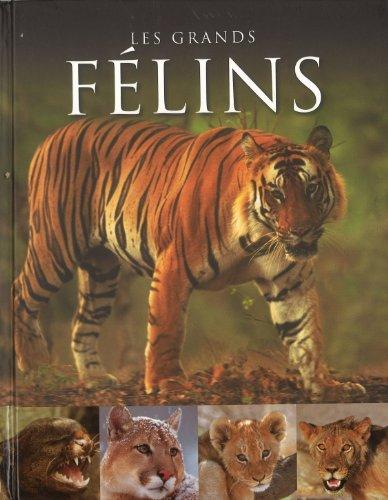 9781445438801: Les Grands Felins (Spirit of Reformat) (French Edition)
