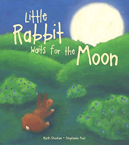 9781445441368: Little Rabit Waits for the Moon (Meadowside (Arlin))