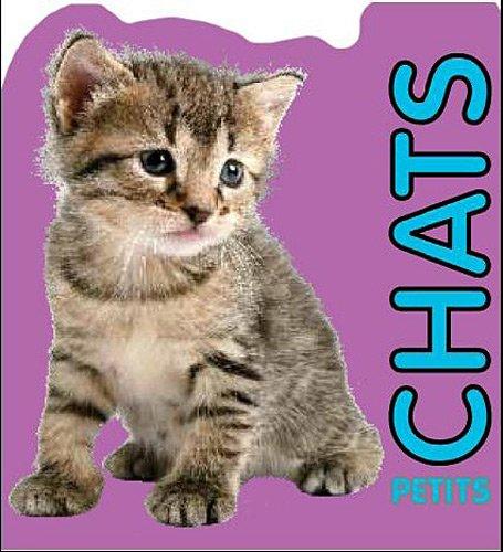 9781445445106: Petits chats