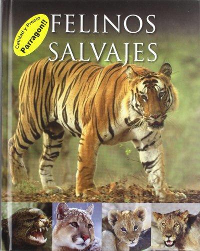 9781445453323: FELINOS SALVAJES