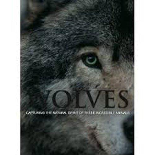 9781445456645: Spirit of Wolves
