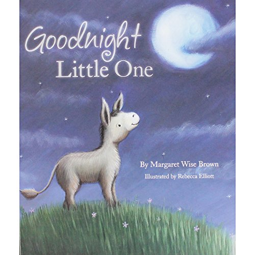 9781445467382: Goodnight Little One (Picture Book)