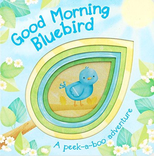 9781445477244: Good Morning Bluebird