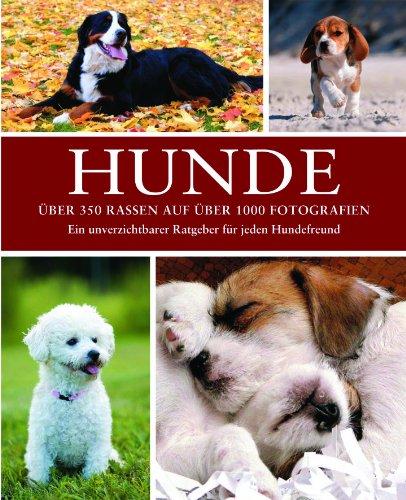 9781445482217: Hunde: Rassen Pflege Geschichte