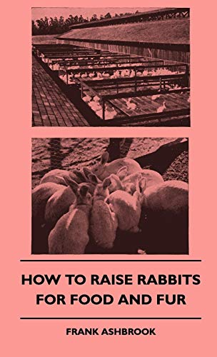 9781445513799: How To Raise Rabbits For Food And Fur