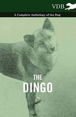 9781445525945: The Dingo - A Complete Anthology of the Dog -