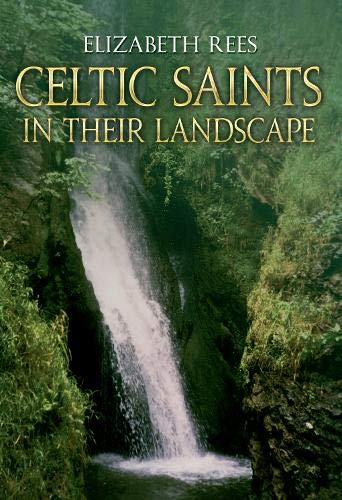 Celtic Saints: In Their Landscape: Rees, Elizabeth