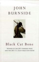 9781445846828: BLACK CAT BONE