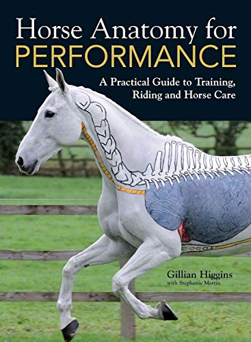 9781446300961: Horse Anatomy for Performance: A Practical Guide to Training, Riding and Horse Care
