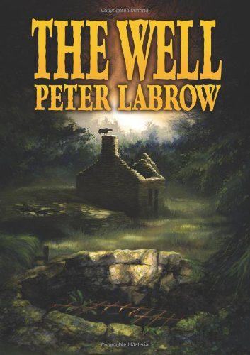 9781446764381: The Well