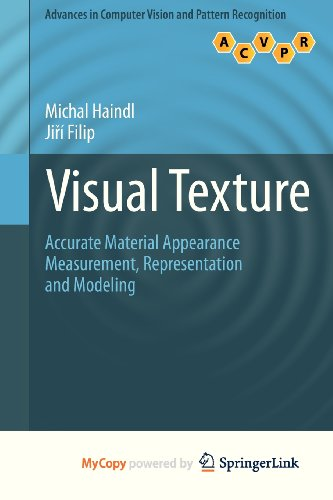 9781447149033: Visual Texture