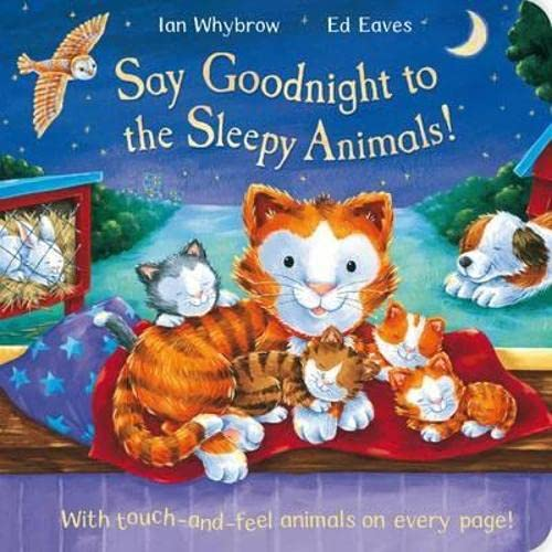 9781447202028: Say Goodnight to the Sleepy Animals!